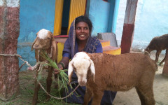 Daliten BhagyaAmma hölls tidigare som tempelslav. Foto: Stella Paul/IPS