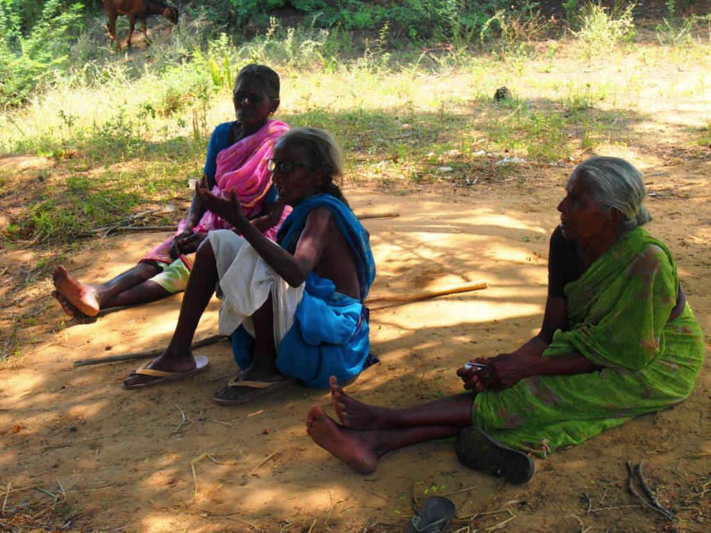 Kvinnor är också involverade i boskapsskötseln men gör inga längre vandringar. Här är tre kvinnor som tagit ut sina får på bete utanför byn Peikulam. Foto: Patrick Wennström