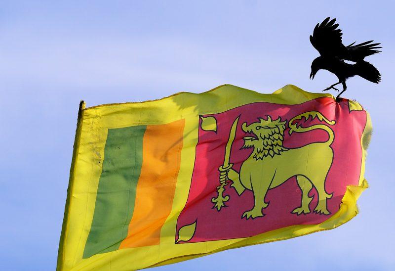 Inbördeskriget i Sri Lanka avslutades i maj 2009. Åtta år senare är efterräkningarna långt ifrån avslutade.