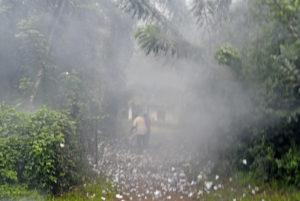 När röken efter segerfirandet lagt sig kan det utkristalliseras vilket Sri Lanka som är att vänta under Gotabaya Rajapaksas styre. Foto: Johan Mikaelsson