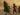 En afghansk familj flyr undan strider